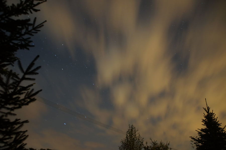 Beauty In Nature Cloud - Sky Dramatic Sky Low Angle View Natural Phenomenon Nature Night No People Non-urban Scene Outdoors Sky Star Field Tree
