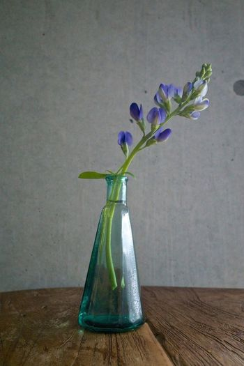 Image of a decorative flower