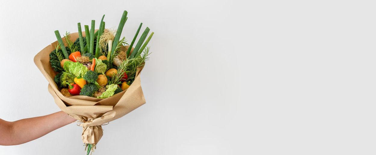Hand holding plant against white background