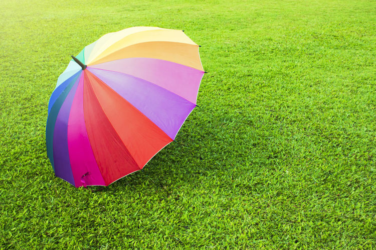 A rainbow color umbrella on green grass under sunlight Green Color Rain Red Sunlight Blue Carpet Colorful Day Evergreen Grass Lawn Meadow Multi Colored Nature Outdoors Purple Rainbow Season  Shadow Summer Sward Turf Umbrella Violet Yellow