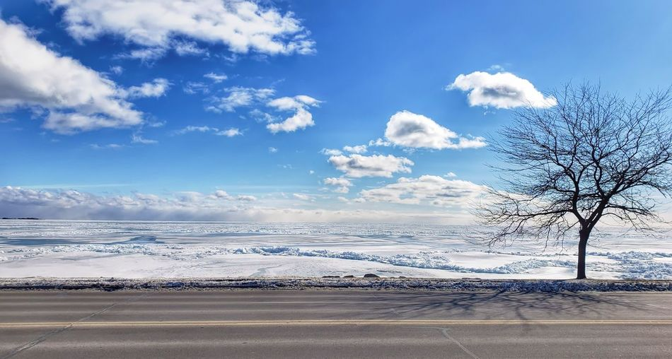 Road by bare trees against sky during winter