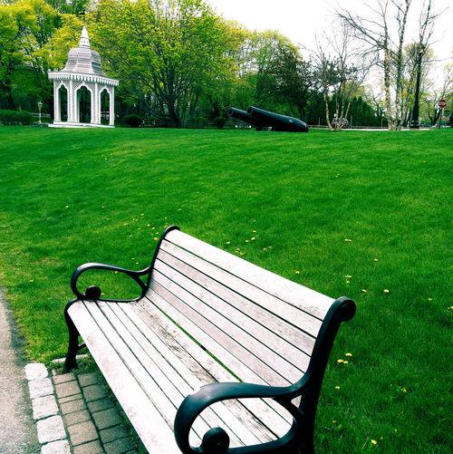 An empty bench.