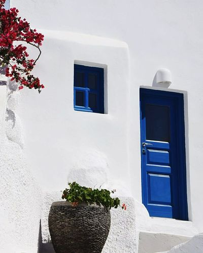 Tipical Santorini's colour Window Architecture No People Indoors  Day Santorini Island EyeEmBestPics Santorini Tranquility Eyeemphotography Tourism Travel Destinations 3XSPUnity Hellas EyeEm Best Shots Greece Blue Color Whiteandblue Door High Contrast EyeEmNewHere The Secret Spaces Place Of Heart The Photojournalist - 2017 EyeEm Awards Sommergefühle Let's Go. Together. EyeEm Selects Neon Life Breathing Space The Week On EyeEm Your Ticket To Europe