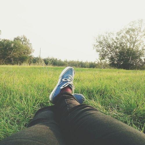 guzel havanin tadini cikarmak Nature Sunnydays Relaxation Adana