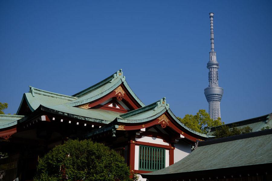 亀戸天神/Kameido Tenjin Shrine Fujifilm FUJIFILM X-T2 Fujifilm_xseries Japan Japan Photography Kameido Shrine Shrine Of Japan Tokyo Tokyo,Japan X-t2 亀戸天神