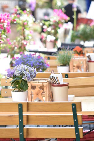 Light Beauty In Nature Beauty In Nature Day Daylight Decoration Flower Flower Arrangement Flower Pot Flowering Plant Flowers Focus On Foreground Freshness Nature Plant Potted Plant Restaurant Still Life Table Wood - Material