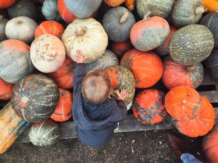 High angle view of pumpkins for sale at market