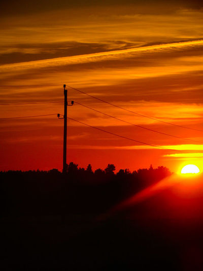Sweden The True Story The Great Outdoors - 2018 EyeEm Awards Electricity Pylon Tree Sunset Rural Scene Technology Silhouette Sunlight Agriculture Electricity  Sun