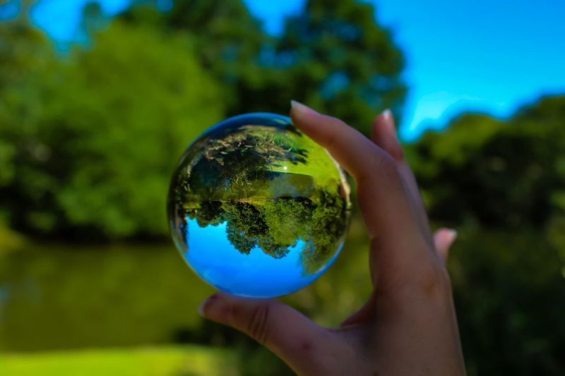 Cropped image of hand holding crystal ball with trees in background