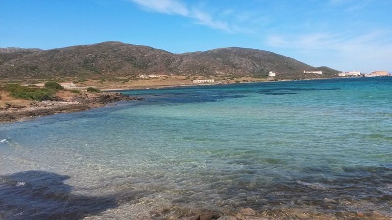 Outdoors Nature Sea Tranquility Day Water Beach No People Beauty In Nature Landscape Mountain Scenics Blue Clear Sky Sky Bay Island Asinara Asinara Island Asinara National Park Asinara Sardinia Sardinia Sardegna Sardinia Sardegna Italy