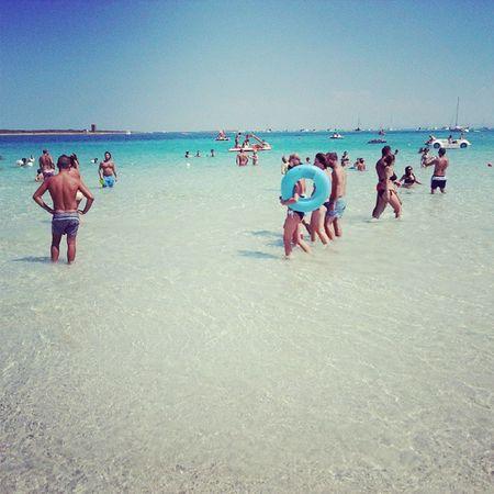 La pelosa -Stintino Sardegna Sardinia Paradise Stintino sea beach mare instagram instamood picoftheday photo bestphoto nicephoto nicepics bestpics picsofthedaylove blue