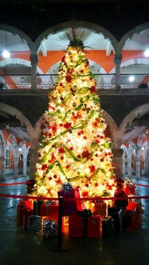 """""""Árbol de Navidad"""" Aguascalientes Mexico Navidad Diciembre"""
