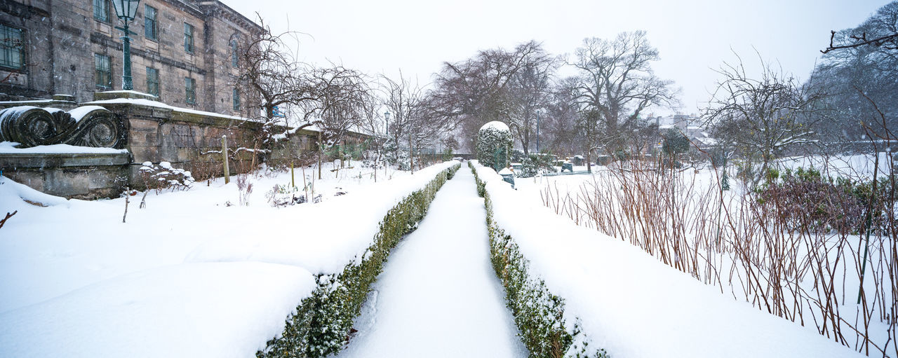 Panorama of snow-covered garden path (shot with tilt-shift lens for highest quality) Edinburgh Edinburgh, Scotland Garden Path Ice Panorama Scotland Tilt-shift Winter Allotment Allotment Garden Blizzard Garden Garden Photography Landscape Snow Snow Covered Snow Landscape  Tiltshift