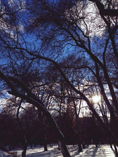 Весна ☀️ Clouds And Sky