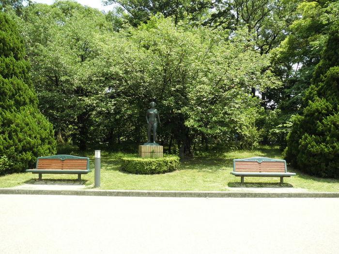 いす みどり 自然 風景 いす ブロンズ像 Absence Beauty In Nature Bench Day Grass Green Color Growth Nature No People Outdoors Park - Man Made Space Seat Tranquility Tree