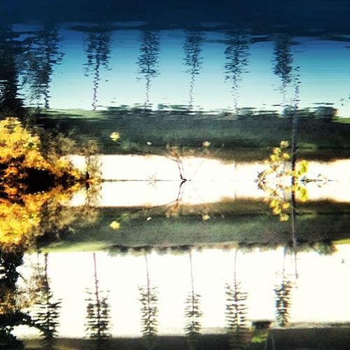 Reflections Reflectionshot Nature_pic Landscape_captures Urbangangfamily Allshots Igaddict Insta_global Insta_global_urban Aninstagramerneversleeps