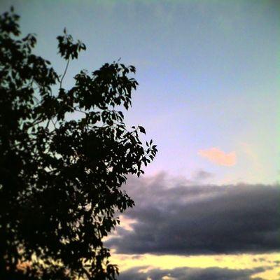 Sunset No Perfect Insta_aceh VSCO Vscocam Vscofriday vscogood