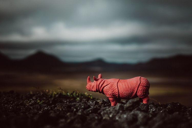 Rhinoceros toy on field against cloudy sky