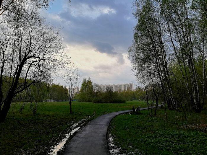 Moscow Yasenevo Spring Sleeping Quarters Tree Sky Grass Cloud - Sky Green Color