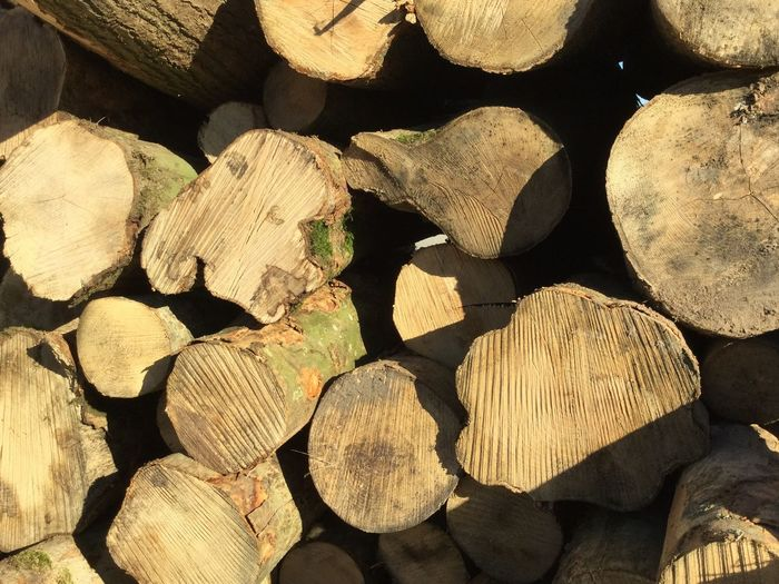 Full Frame Shot Of Logs On Sunny Day