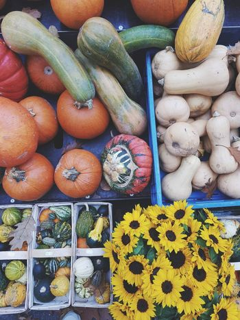 Market Variation Vegetable Freshness Healthy Eating Food And Drink No People Large Group Of Objects Multi Colored Ready-to-eat EyeEm Best Shots Autumn Beauty In Nature Pumpkins Nature The Week On EyeEm Choice Market For Sale Hungry October Minimalism Round Food Outdoors Abundance Full Frame