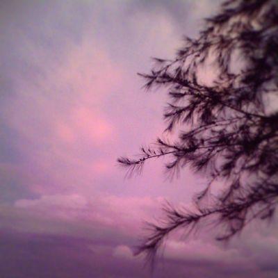Pink cluods Insta_aceh Kebaskepala VSCO Vscocam vscogoodvscofridayvscoauthentic