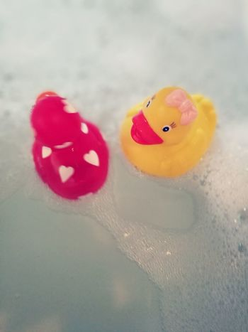 Red Close-up No People Day Lieblingsteil Quietscheente Rubber Duck HuaweiP9 Relaxation Water Red Indoors