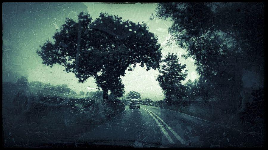 Rainy days. Roadtrip. Road. Wet. Rain. Car. Line. Motor. Traffic. Country Monochromatic