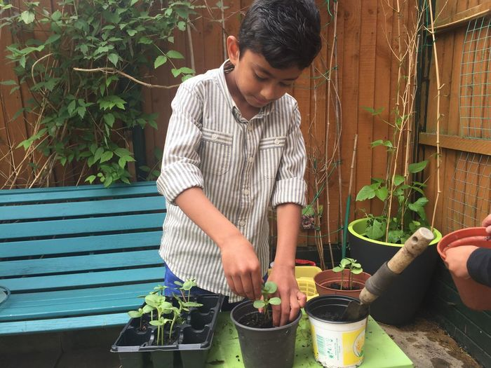 Little boy potting plants in back yard