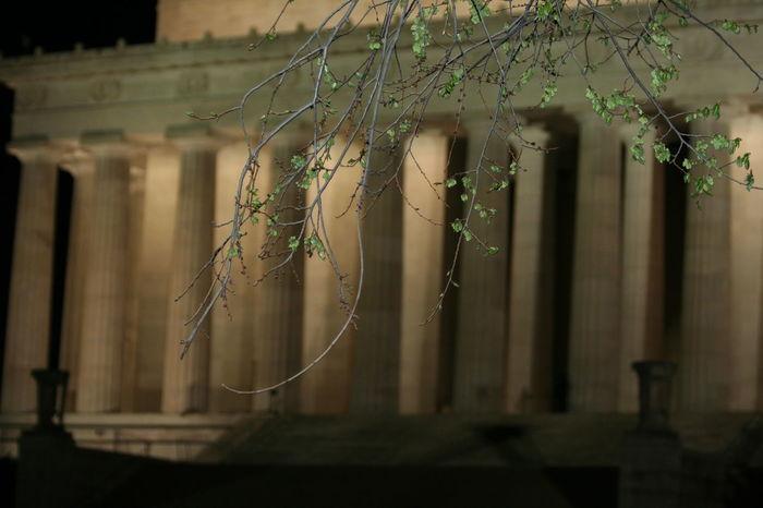 Lincoln Memorial Washington, D. C. Eyemart Eyemphotography EyeEm Best Shots