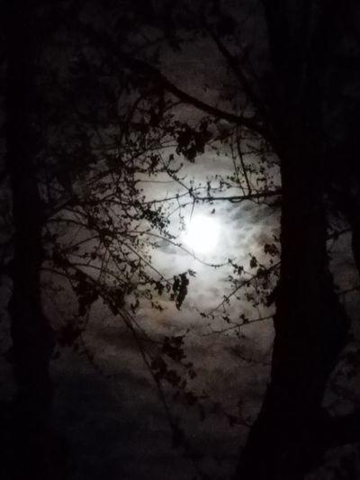 Taken tonight (2-28-2018). No People February Moon Moonlight