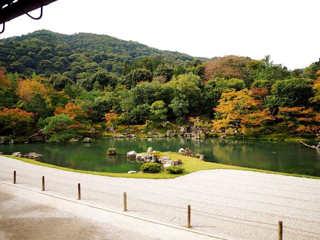 Kyoto Japan Arashiyama Tenryuu-ji Tenryuu-ji Temple Temple Garden Pond Autumn Autumn Colors Green Red Olympus PEN-F 京都 日本 嵐山 庭園 池 紅葉 秋 天龍寺 寺