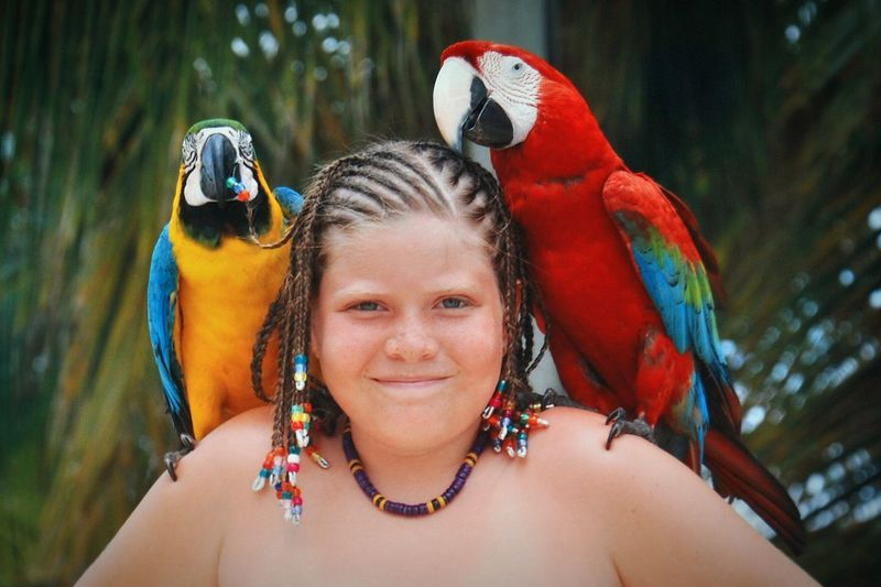 Portrait Of Girl With Parrots