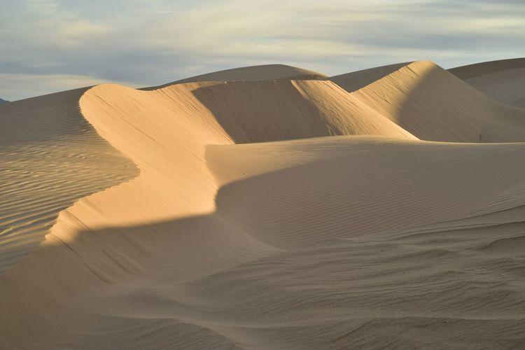 Imperial Sand Dunes, California, USA California Desert Dunes Extreme Terrain Imperial Sand Dunes Landscape Sand Sand Dune Sand Dunes