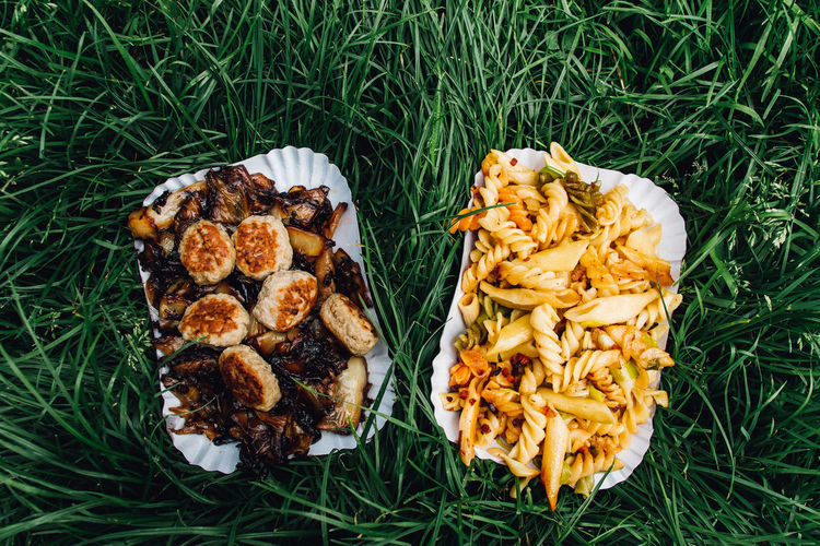 Directly Above Shot Of Food In Plates On Grassy Field