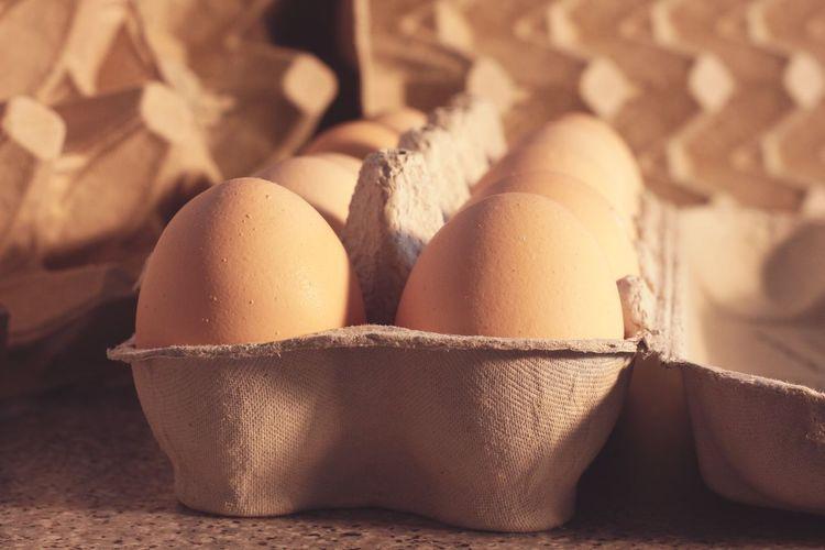 Egg Yolk Egg Carton Egg Close-up Food And Drink Eggshell Froth Art Egg White Animal Egg Fried Egg Omelet Animal Nest Boiled Egg Eggcup Served Pepper Shaker Sunny Side Up Nest Egg Bird Nest