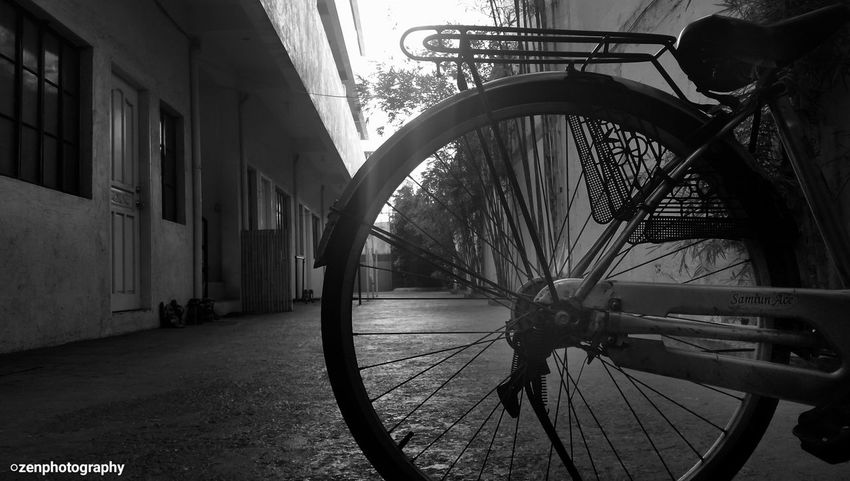 Riding a bicycle is so much fun:) Photography Blackandwhite Yolo Wheels