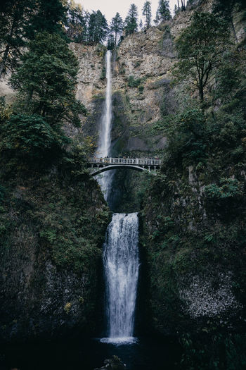 Multnomah Falls  Oregon Portland Pacific Northwest  Waterfall Waterfalls Waterfall With Bridge Bridge - Man Made Structure Two Waterfalls Water Long Exposure Tree Plant Flowing Water Motion Scenics - Nature Nature Bridge Beauty In Nature Forest Built Structure No People Connection Architecture Blurred Motion Power In Nature Flowing Outdoors Day