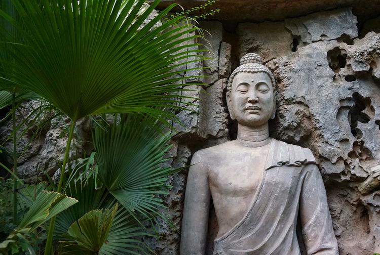 Buddha statue against trees