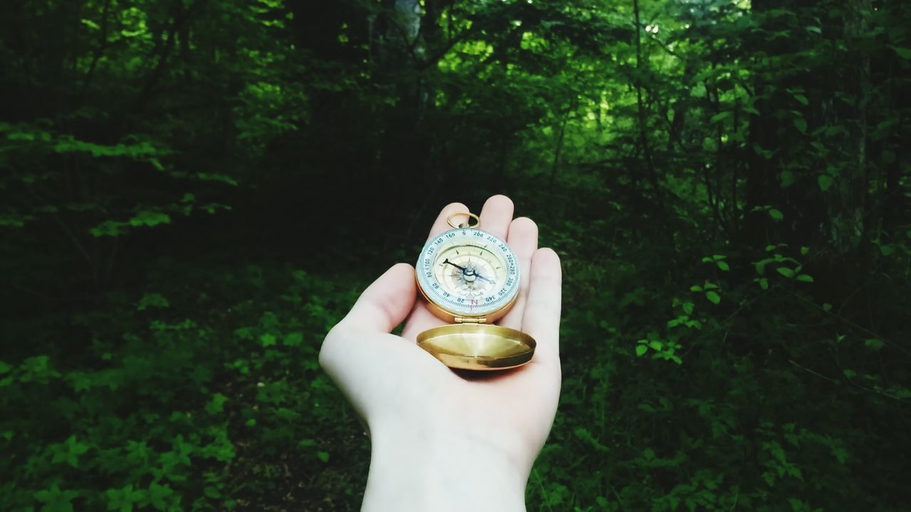 Cropped hand with navigational compass against trees in forest