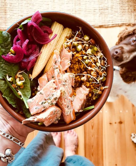 Dog Included Unusual Food Shot Lunch Holding Bowl Of Food Superfood Salad Bowl Salad Bowl Food Food And Drink Human Hand One Person Hand Freshness Human Body Part Healthy Eating Directly Above Indoors