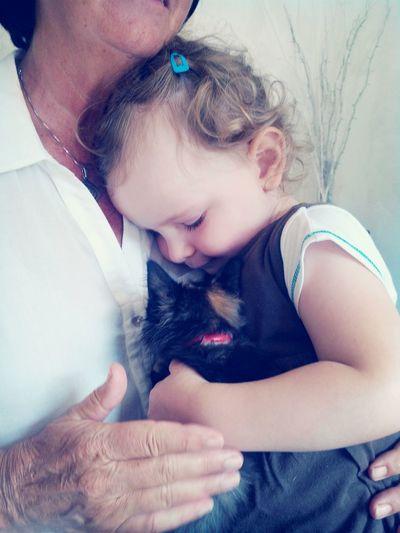 Arrivée du chat dans la famille, un beau cadeau Cute Pets Cat Child Portrait Gift