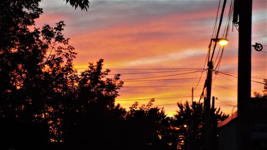 EyeEmNewHere Montreal, Canada Beauty In Nature Growth Nature No People Outdoors Petite Italie Scenics Silhouette Sky Sunset Telephone Line Tree