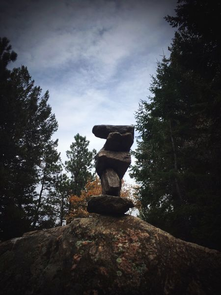 Another of my creations! Tree Nature Rock - Object Sky Stone - Object Beauty In Nature Outdoors Rocks Denver,CO Mountain Lookout Mountain Rockstacking Autumn