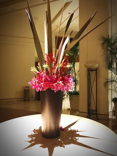 Flower Flowers Busena Terrace