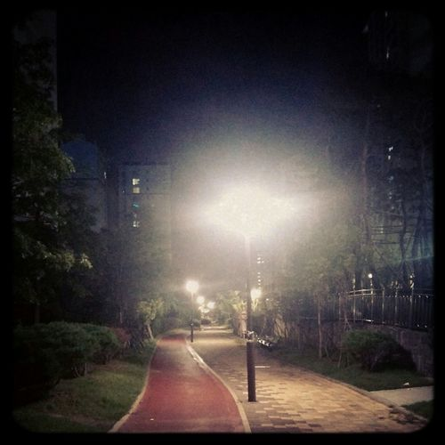 Night Walk