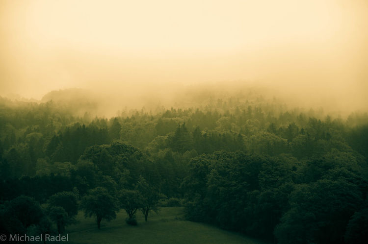 Misty Mountains  Landscape_Collection Nature_collection Eyem Best Edits