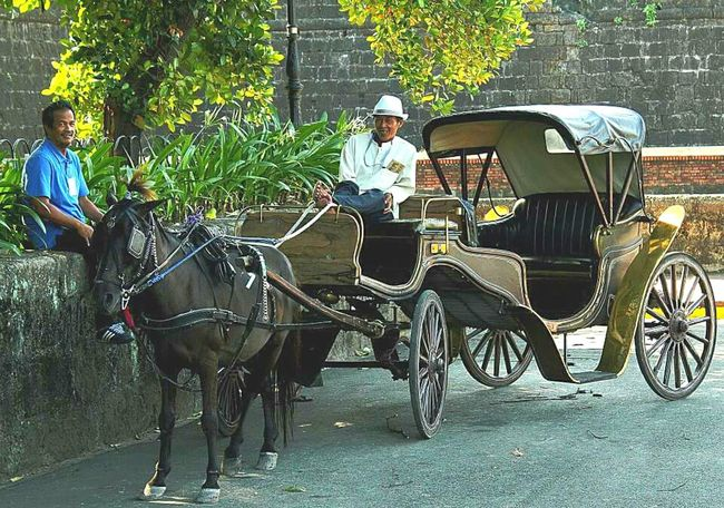 a Calesa in Intramuros Manila 👍 despite being tired from the day's work accompanied by the exhausting hot weather, the Cocheros (calesa drivers) were widely smiling when I took their photos😊👍 Street Photography Culture Old Traditional Transportation Taking Photos Candid Photography Fresh On Eyeem  Travel Photography Philippines Outdoor Photography Canon Local Old City Old Street Friendly Faces Feel The Journey Original Experiences Eyeem Philippines Showcase June People And Places