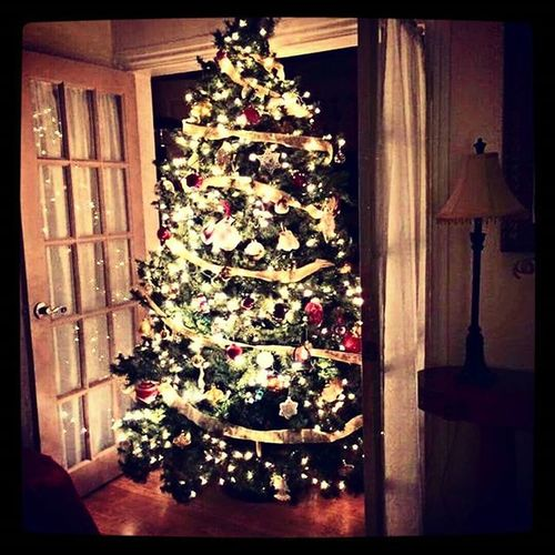 Ready for the annual Christmas Eve party at the Gush household ...Falala Christmastree Lovebeinghome Merrymerry PAwinter Mommagush FamilyTime