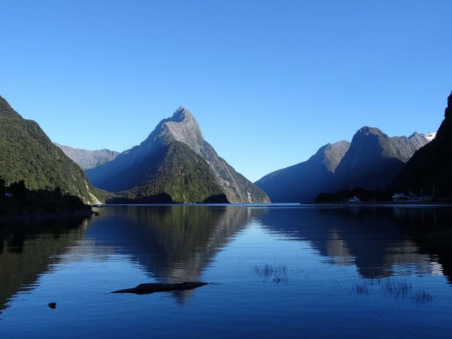 Mountain Reflection Blue Clear Sky Beauty In Nature Scenics Nature Water Idyllic Tranquility Mountain Range No People Tranquil Scene Lake Outdoors Day Animal Themes Sky Water Reflections Milford Sound Morning Morning Light New Zealand Symmetry